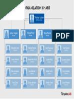Organization Chart Template 8 - TemplateLab.com