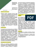 MODELO DE PLANTA PARA RECUPERACIÓN DEL ORO DE LA PEQUEÑA MINERÍA Y MINIMIZAR LOS IMPACTOS AMBIENTALES EN CHAPARRA.docx