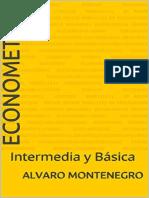 ECONOMETRIA INTERMEDIA Y BASICA