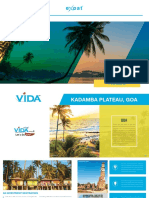 VIDA Phase 2 Brochure for Web