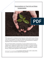 Cost-Effective Bioremediation to Treat Soil and Water Contamination