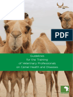 4369.vsfcamel_health_red.pdf