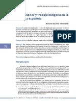 Trabajo Indios.pdf