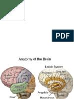 LO Anat Psikiatri