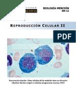 BM12 Reproducción Celular II