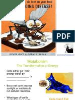 MicrobialMetabolism.pptx