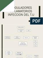 Moduladores Inflamatorios INFECCION DEL T
