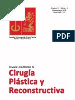 Cirugía Plástica y Reconstructiva Volumen 24 No 2 Diciembre 2018  - Plastic and Reconstructive Surgery, Vol 24 Nº 2, December 2018