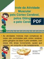 Controle da Atividade Muscular pelo Córtex Cerebral, pelos Glânglios e pelo Cerebelo.ppt