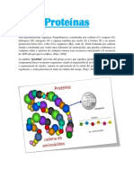 Doc.proteinas