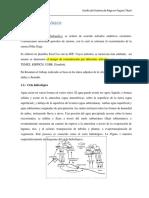 agenda-del-riego-2025-171206193524