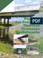 proyecto de puentes y caminos vecinales