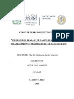 informe-penitenciario (1).docx