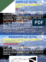 55180646-Diapositiva-Desarrollo-Fetal.ppt