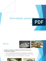 Diversidade Animal IV