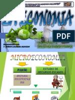 ECONOMIA (MACRO-MICRO ECONOMIA) EDWIN AMADOR