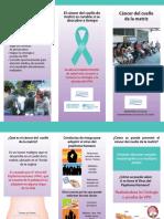 Triptico Cancer Cervico Uterino