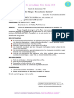 Informe Pre-prof.