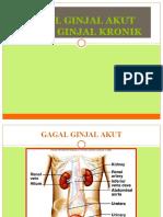 1. GGA- GGK