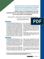 Metabolitos Secundarios y Actividad Antibacterial Plantajo Mayor, Staphylococus Aureus