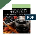 Mermelada de Arandanos Salcedo y Correa Gp1