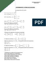 Ejercicios y Problemas Matrices Determinantes y Sist Ecuaciones (1)