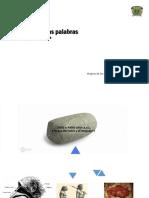 2018A-Portafolio Inglés 1