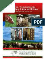 produccion_y_comercializacion_de_la_carne_veracruz_vf.pdf