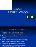 5. Kuliah Gene Regulation.ppt