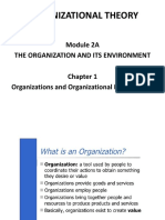 Module 2a1 - The Org and Its Env. - Ch 1-Organizations & Org'l Effectiveness