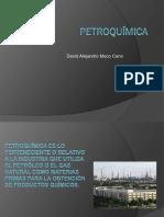 112009980-Petroquimica
