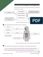 3 Tema 2 Naturales Evaluacion 6º PDF