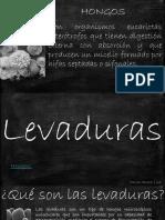 Levaduras.pptx