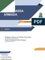 Argamassa Armada