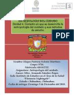 U4 Solorio.doc