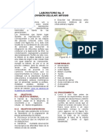 LABORATORIO%20No%209.%20MITOSIS.pdf