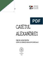 Caietul Alexandrei Bt