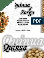 Quinua e Sorgo