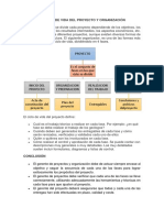 El Ciclo de Vida Del Proyecto y Organización