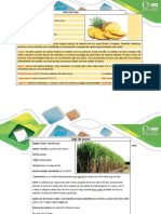 Ficha No 2 Clasificación Botánica Taxonómica
