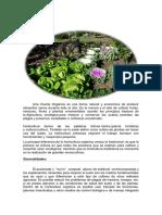 Huerta Orgánica (2)