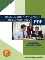 Guia Formulacion y Evaluacion de Los Estados Financieros 2018 I (1)
