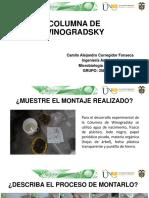 Diapositivas_Columna de Winogradsky