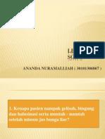 Ananda Lbm 6 Kgd