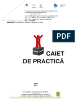 Caiet_practica_final.pdf