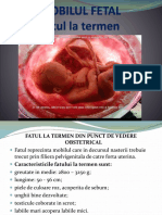 Mobilul Fetal (1)