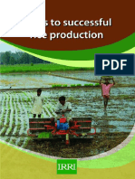 12-Steps-Required-for-Successful-Rice-Production.pdf