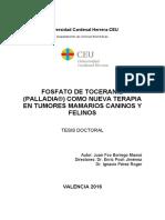 TesisCurroBorrego_09032017