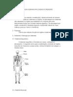 Anatomia e Fisiologia Humanas Aplicadas Ao Resgate