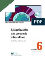 Alfabetizacion Intercultural